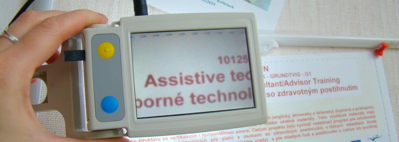 Handheld electronic magnifier